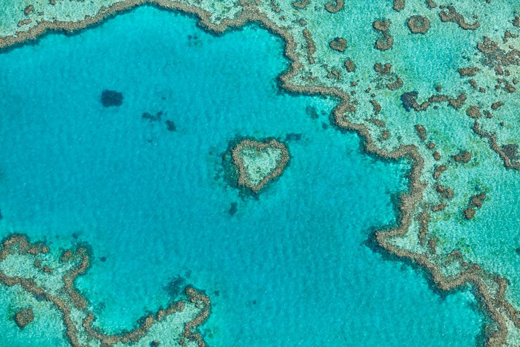 Great Barrier Reef and Whitehaven Beach